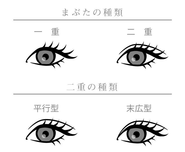 まぶたの種類は大きく分けて「二重まぶた」「一重まぶた」と2 種類。しかし、まぶたの脂肪の厚みや幅などさまざまなまぶたの種類があり、その中でも二重まぶたは、欧米人に多い二重の幅がほぼ一定の「平行型」タイプ、日本人に多い目尻に向かって二重の幅が広くなっている「末広型」タイプと「奥二重まぶた」があります。