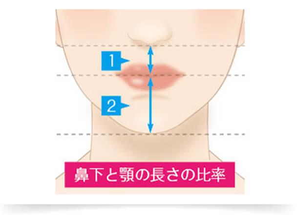 一般的には、上唇と下唇の比率は「1:1.3 ~ 2」でキュッと上がった口角、鼻下とアゴの長さの比率が「1:2」だと美しく見えると言われています
